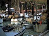 Fishing boats docked in Bella Coola, Canada
