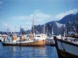 Fishing boats in harbor, Bergen, Norway