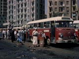 Buses at bus stop in Cairo, Egypt