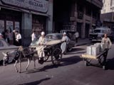 Push-cart and donkey-pulled cart