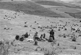 Nomadic Tibetan children sitting on hillside in Tibetan Plateau