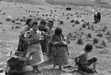 Nomadic Tibetan children and yak on hillside in Tibetan Plateau
